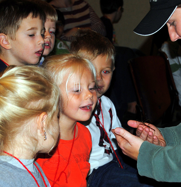 Young children watching animal presentation